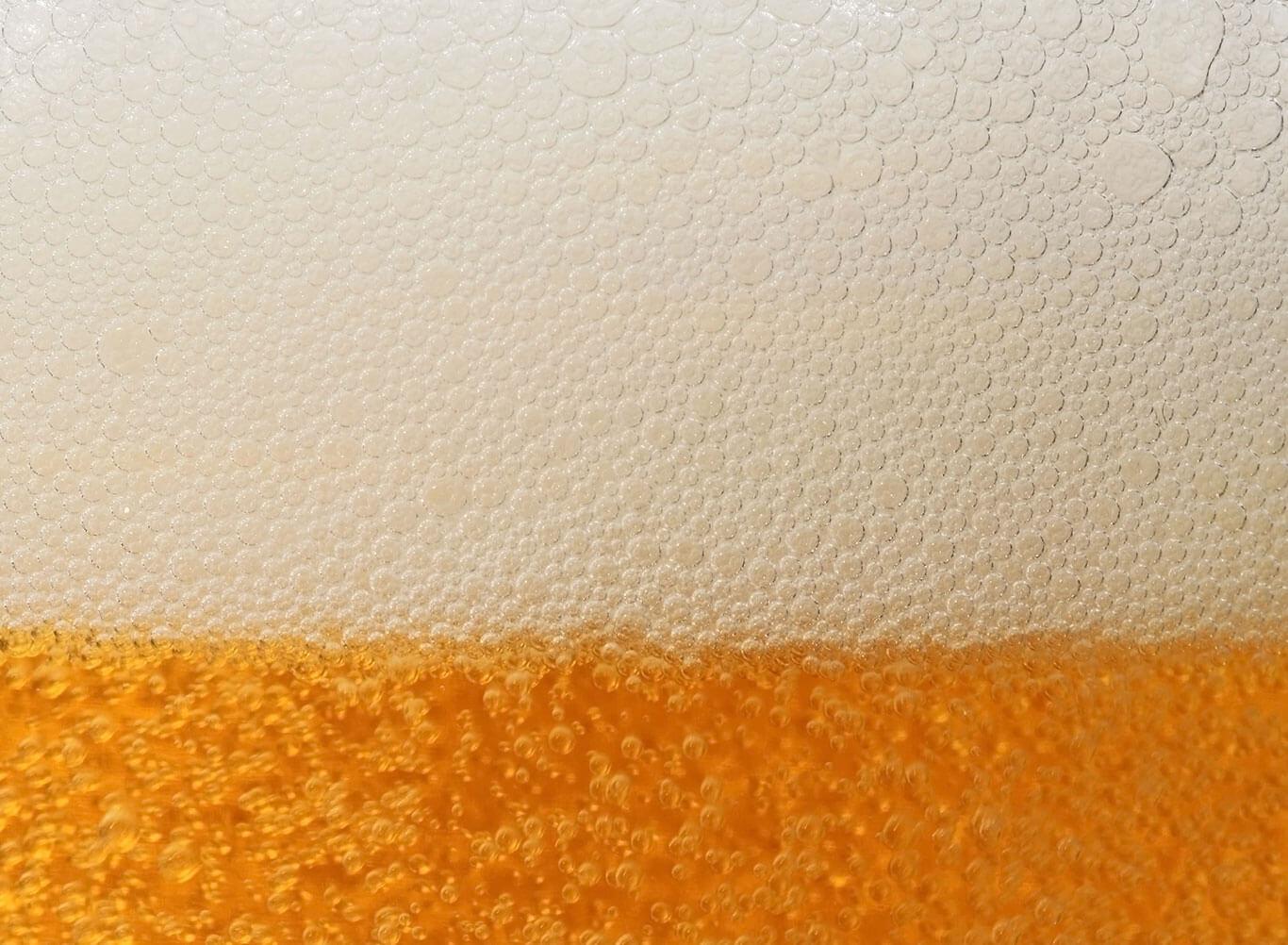 Beer Parallax 1